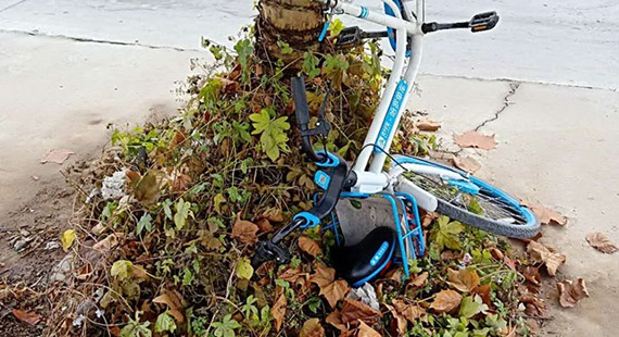 """共享單車成了""""倒栽蔥"""""""