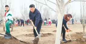 習近平談植樹:前人種樹后人乘涼 一代接著一代干