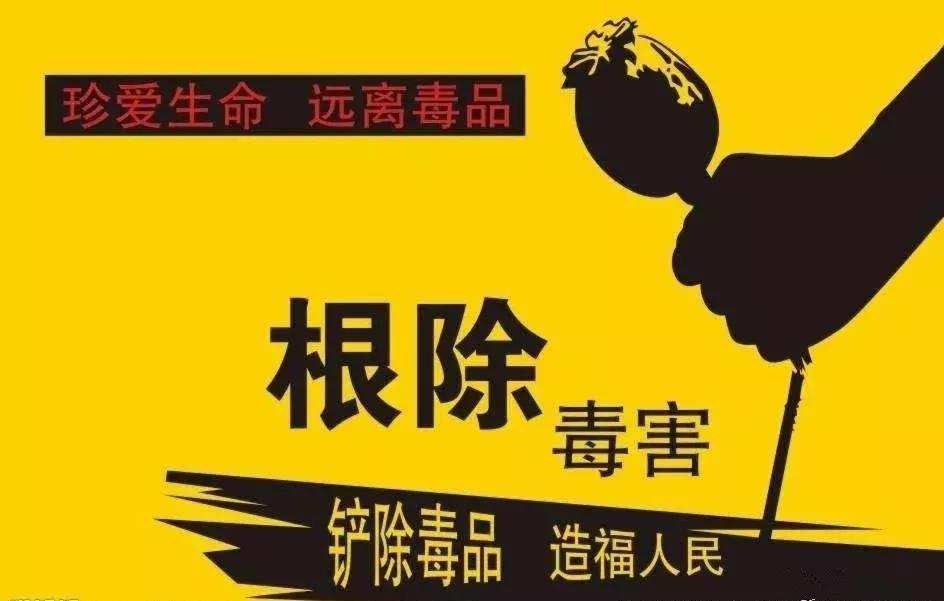 蠡县4部门联合发出禁种铲毒工作通告,这件事千万别做!!!