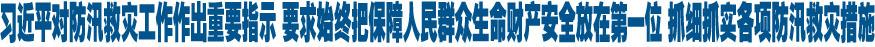 习近平对防汛救灾工作作出重要指示 要求始终把保障人民群众生命财产安全放在第一位 抓细抓实各项防汛救灾措施