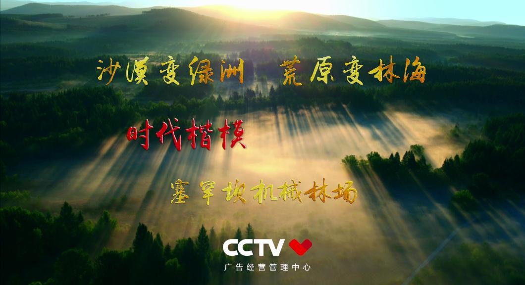 中国农民丰收节感人瞬间——塞罕坝机械林场